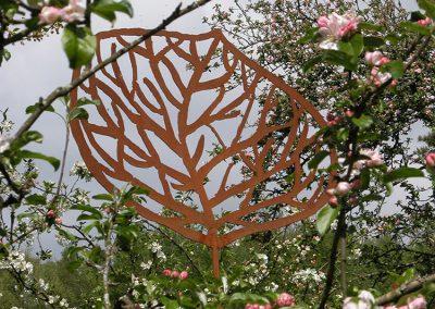 Andreae Leaf