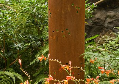 Flower Meadow Tube, Crocosmia
